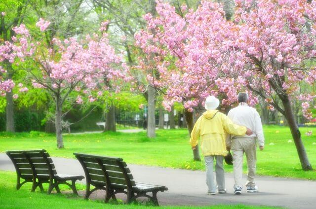 老老介護・認認介護とは?超高齢化社会の日本が抱える問題点