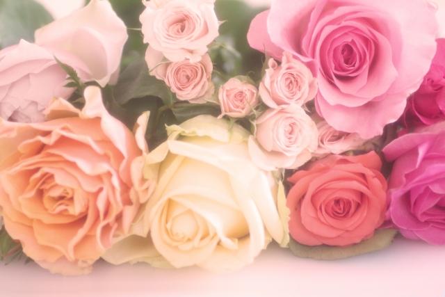 まずは育てるバラの種類を決める