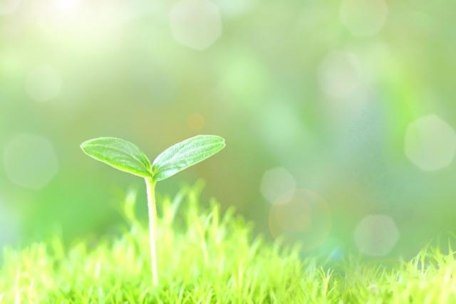 地球温暖化対策を目的とした課税制度