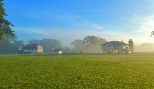 農業の6次産業化は日本の農家を救えるか