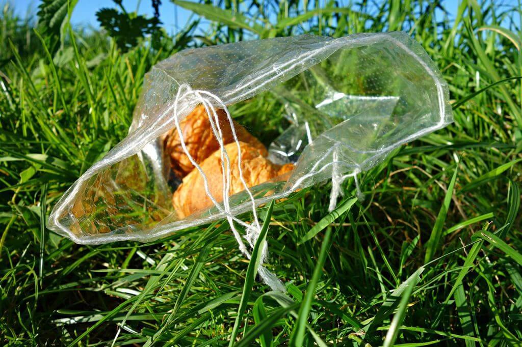 食品廃棄問題