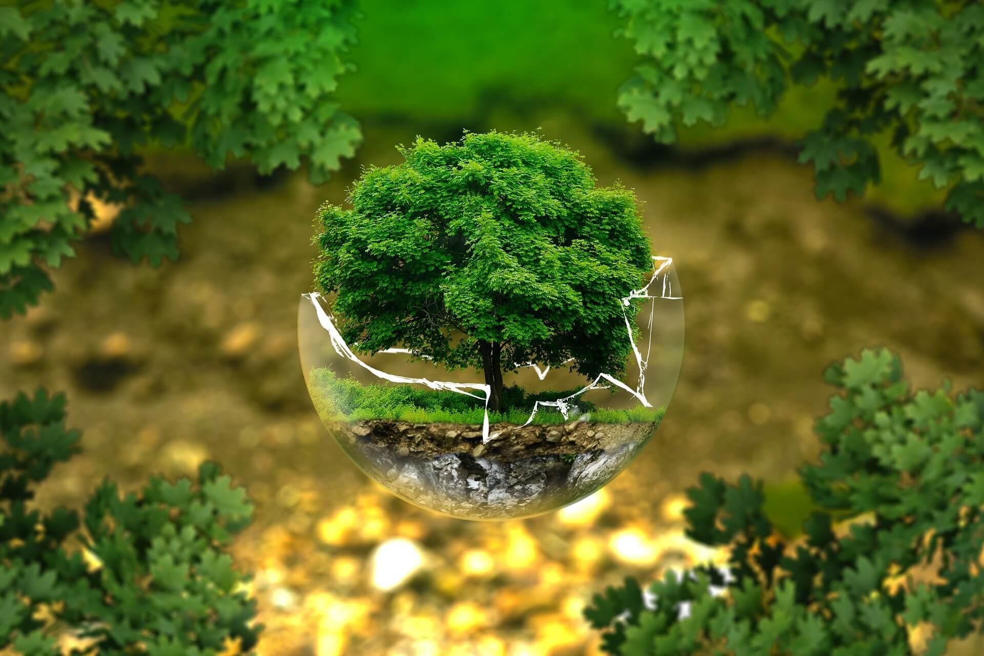 地球 温暖 化 メリット