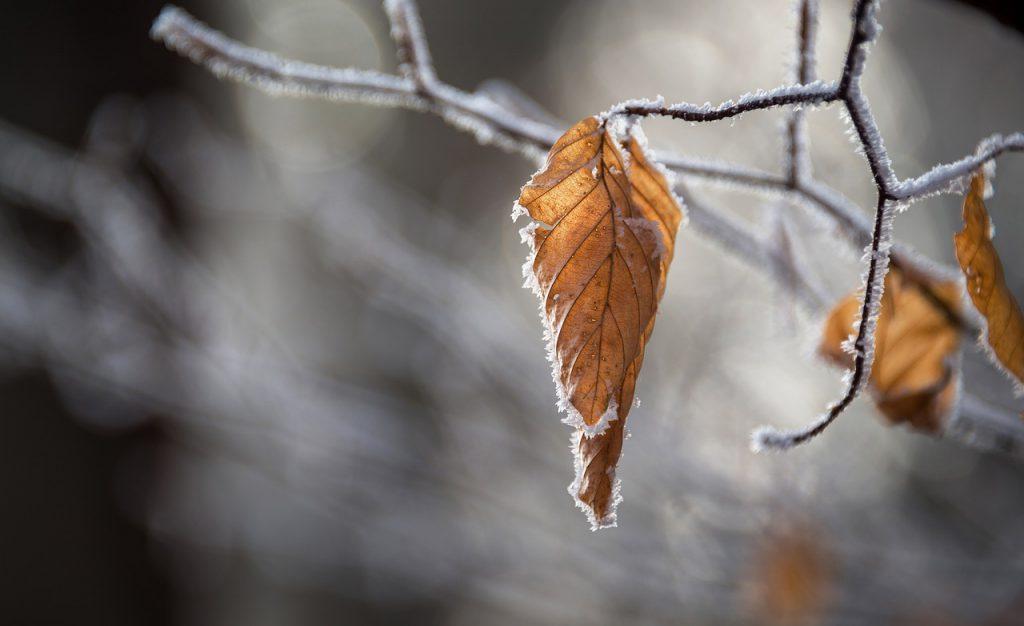豪雪地帯対策特別措置法について