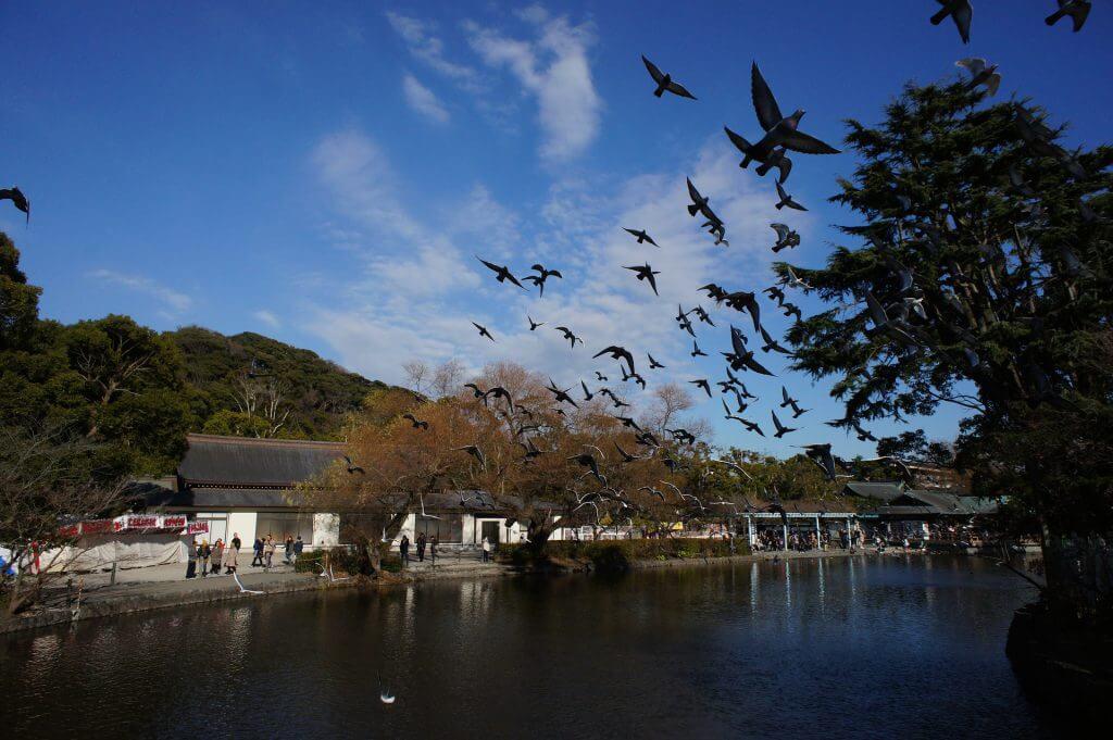ユネスコ食文化創造都市としての鶴岡