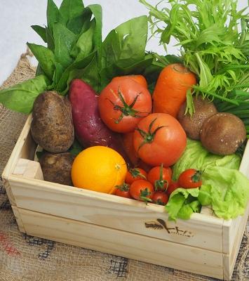 島原野菜のブランド化を推進する