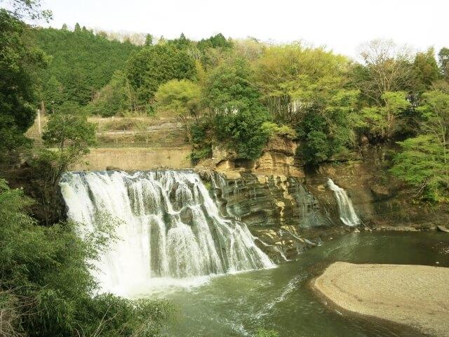 栃木県産「中山かぼちゃ」