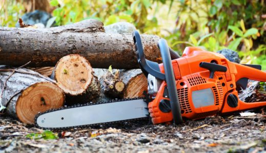 第一次産業として発展を続ける「林業」の仕事内容・平均年収と今後の課題