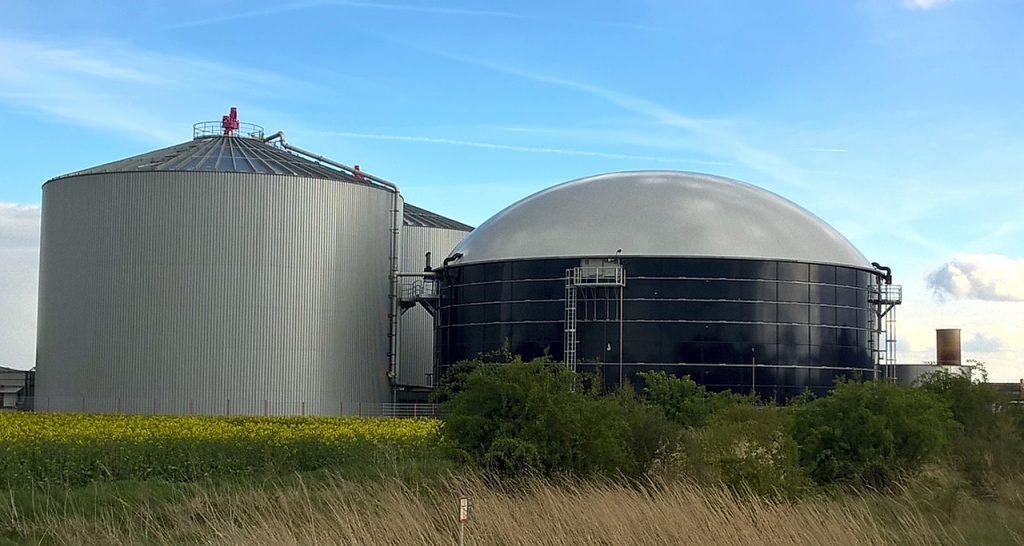 バイオマス発電にも利用されるパーム油