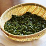 捨てられていた海藻「アカモク」がスーパーフードになった理由