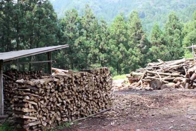 林業の現状と課題