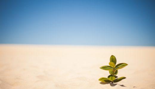 砂漠化の原因と日本の取り組み 鳥取砂丘についても解説