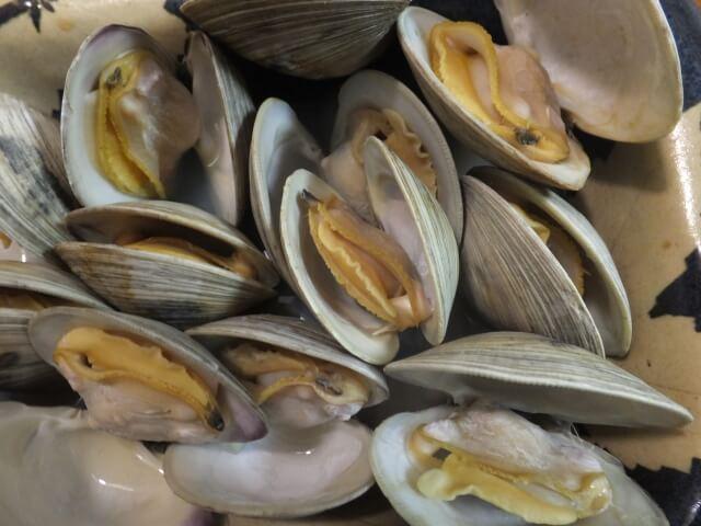 安くておいしい話題の食材「ホンビノス貝」に迫る!