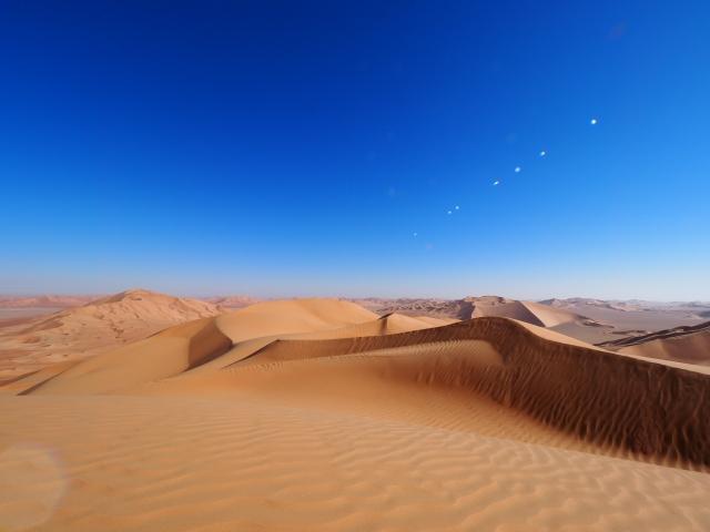 砂漠化に対する日本の取り組み