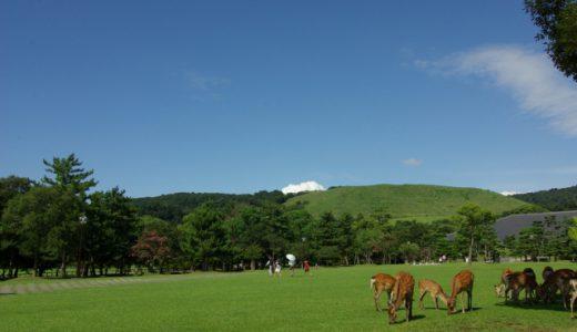 観光の名所「奈良県」でおすすめのお土産