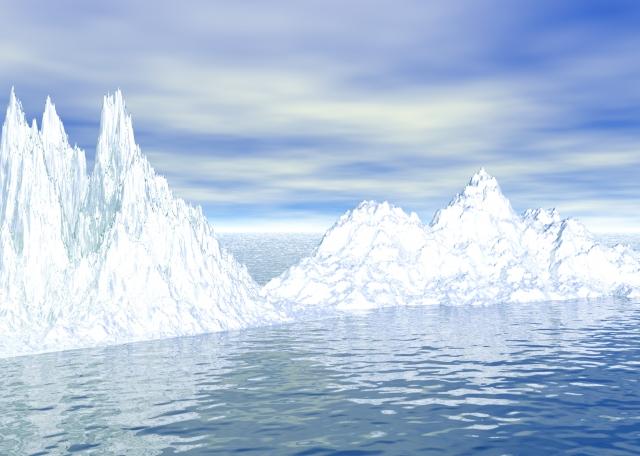 南極に生息している生物