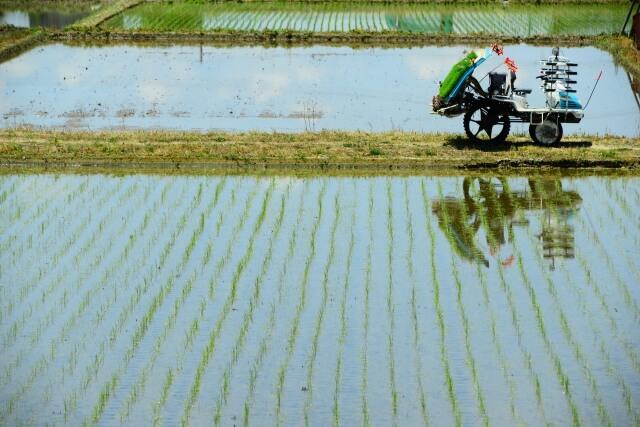 農業法人と農業生産法人
