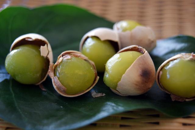 「銀杏(ギンナン)」に含まれる栄養価と効能 食べ過ぎには注意!