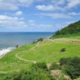 未来に受け継がれるべき日本の農業のカタチ「世界農業遺産」とは