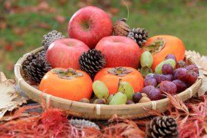 食品の保管や提供にかかわる安全管理