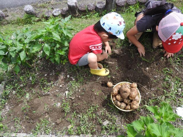 農業の新しいカタチ「観光農園」