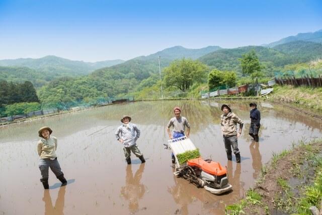 観光と農業をつなぐ「観光農園」は第一次産業を救えるか