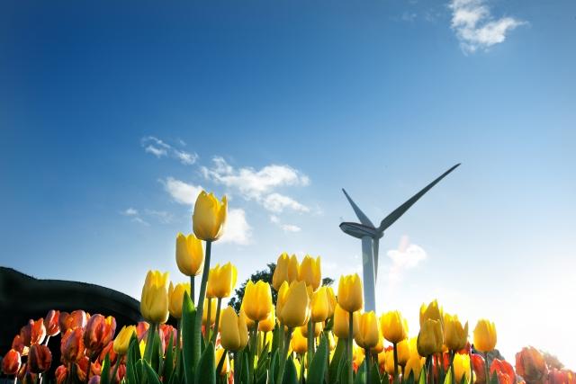 風力発電の問題点