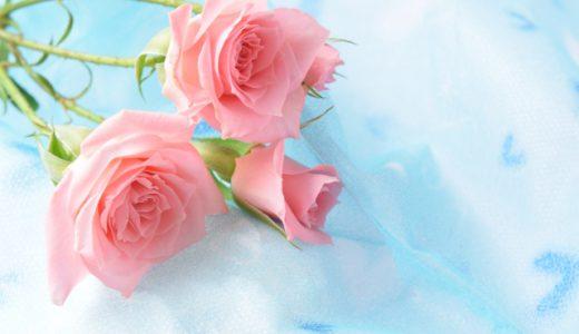 バラの種類はどれくらいあるのか