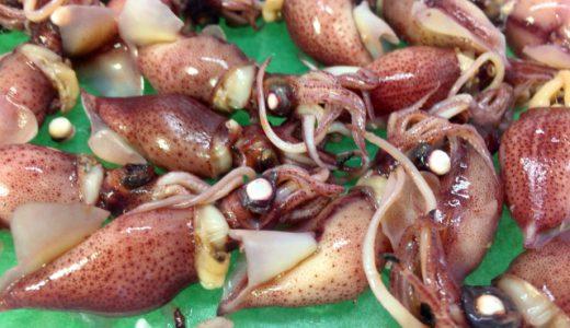 海の宝石とも呼ばれるホタルイカの旬とおいしい食べ方