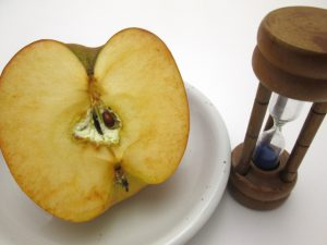 食中毒の主な原因