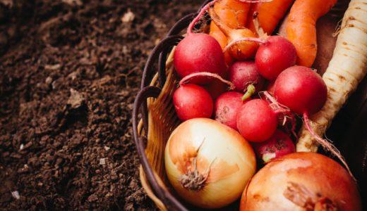 オーガニックとは?有機栽培・無農薬栽培との違いについても紹介!