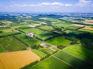 高まる若者の農業への関心