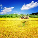 日本の農業を取り巻く理想と現実